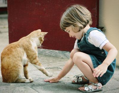 Kačių kūno kalba: ką ji išduoda?